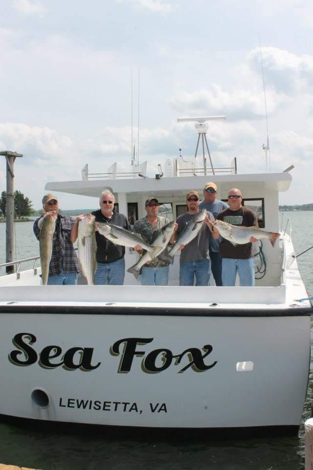 Fishing trips sport fishing charters near richmond va for Fishing trips in virginia